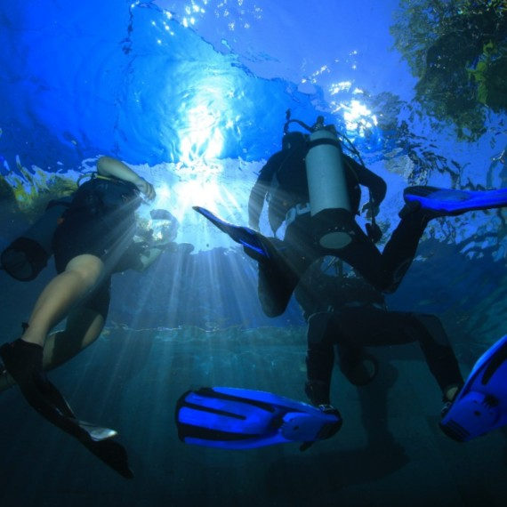 TIPS AND TRICKS FOR A FIRST DIVE | Atlantis bali Diving
