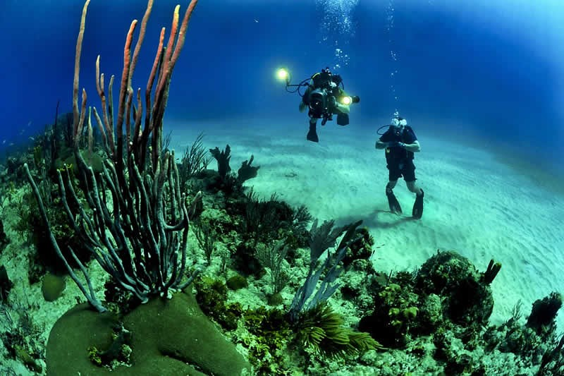 Planning A Diving Trip In Indonesia? Go For The Appealing Bali And Gili Islands | Atlantis Bali Diving