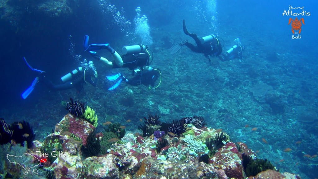 Gilis dive site | Atlantis Bali Diving