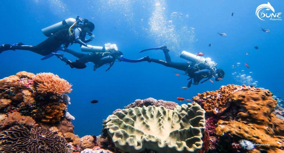 5 Reasons Why You Should Consider Becoming A PADI Divemaster In Bali | Atlantis Bali Diving