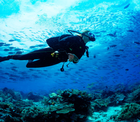 5 Reasons You Have To Go Scuba Diving In Bali | Atlantis Bali Diving