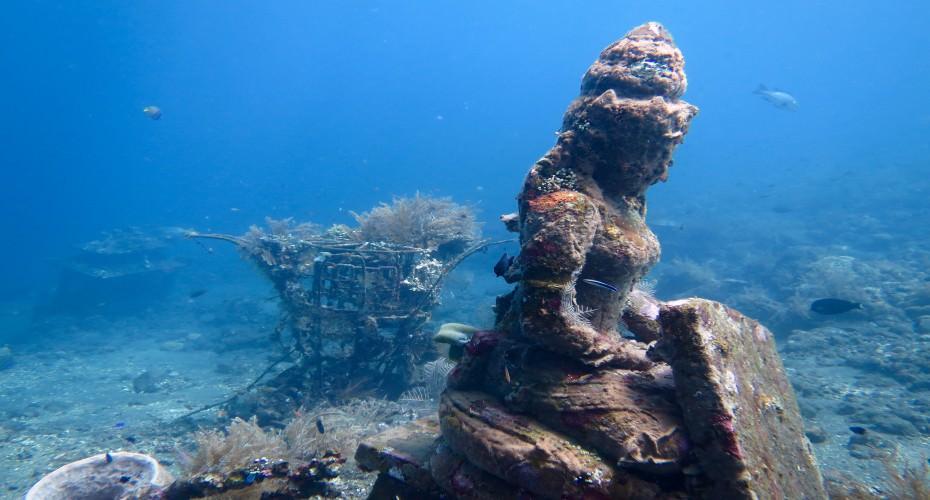 Artificial Reefs In Bali