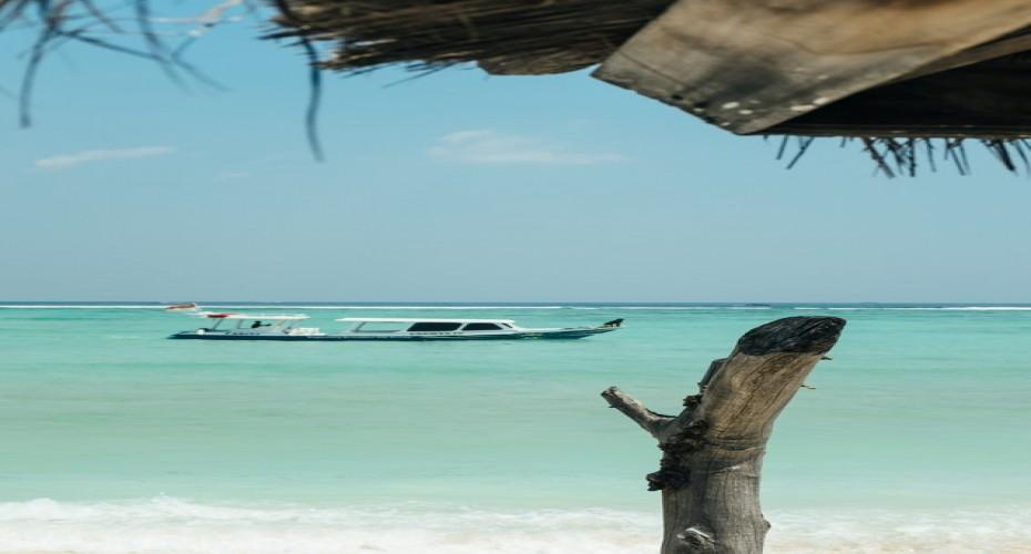 Find The Internship Of Your Dreams | Atlantis Bali Diving
