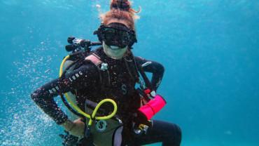 Mini Safari Padang Bai | Atlantis Bali Diving