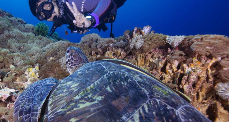 Coral Propagation | Atlantis Bali Diving