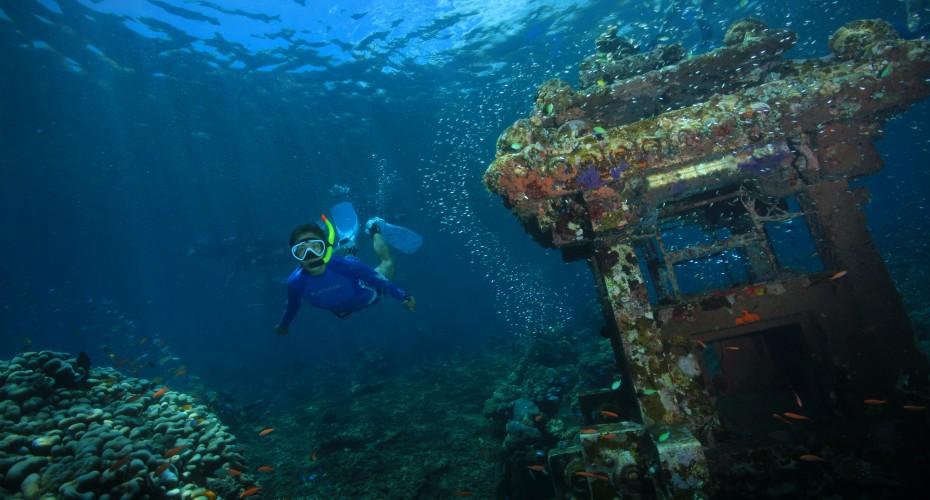 The World Of Snorkeling In Bali! | Atlantis Bali Diving