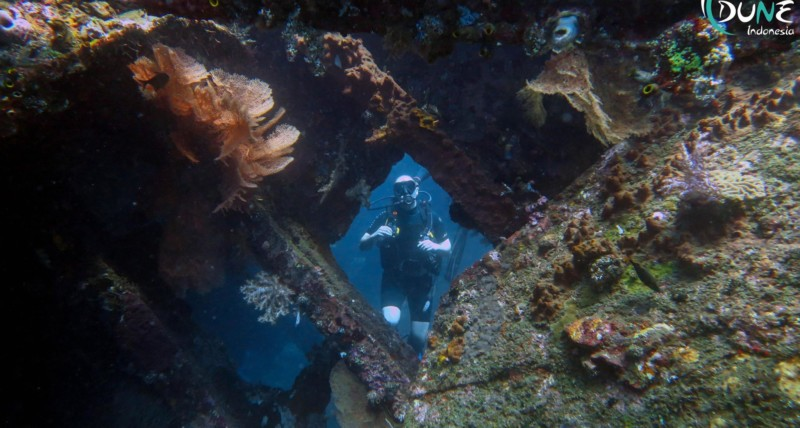 Wreck Instructor | Atlantis Bali Diving