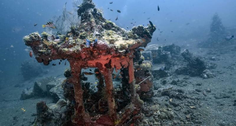 PADI Wreck Diver Course in Bali | Atlantis Bali Diving