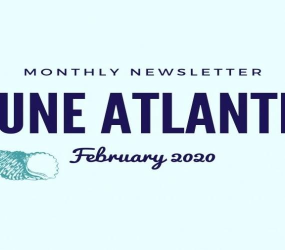 Monthly Newsletter Feb 2020   Atlantis Bali Diving