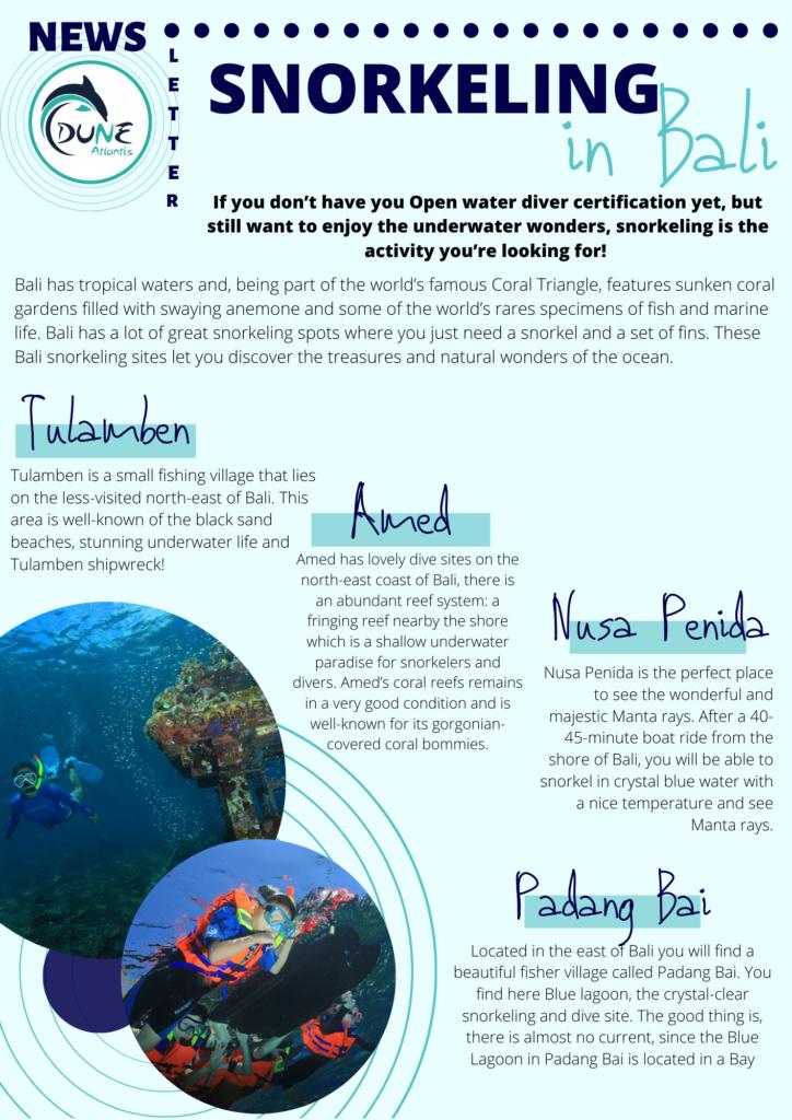 Newsletter December - Snorkeling in Bali | Atlantis Bali Diving