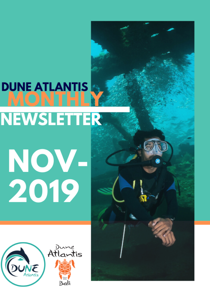 Newsletter November 2019 | Atlantis Bali Diving