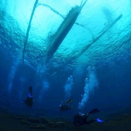 Dive with Atlantis Bali Diving