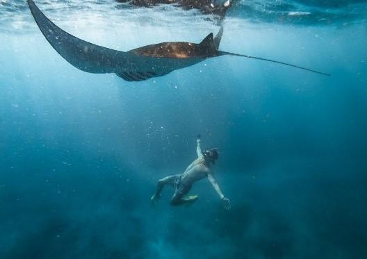 Manta Point Snorkeling   Atlantis Bali Diving