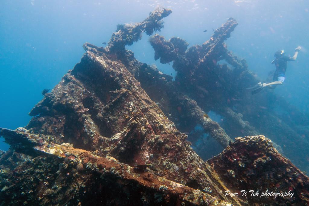 Les récifs artificiels à Bali   Atlantis Bali Diving